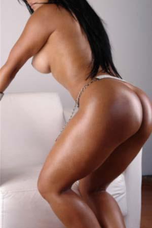 Miami independant escorts The Las Vegas Escorts Official Site